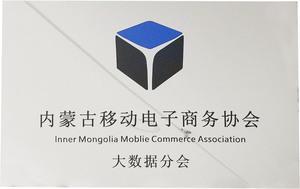 内蒙古移动电子商务协会大数据分会.jpg